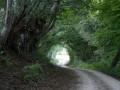 Sentier de Guédelon