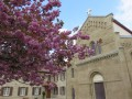 Abbaye de la Trappe de Chambaran