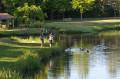 Boucle des deux étangs au départ de Saint-Macaire-en-Mauges