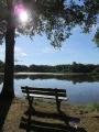 Circuit découverte de quelques étangs de Brenne autour de Migné