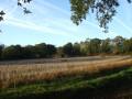 Dans la campagne de Gouesnach