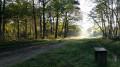 Petit tour en Forêt de Cheverny