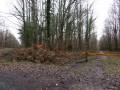 Le Poinçonnet, sa forêt domaniale et ses environs