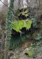 Autour de la Forêt de Grézelles