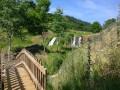 Bois de Lavergne et de Belinay