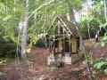 Forêt d'Eawy pour petits et grands autour de la chapelle Saint-Étienne