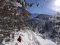 Villard-de-Lans : Des Clots au Col Vert, retour par la Combe Charbonnière