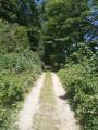 Le circuit des Bois de Fagne