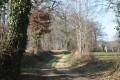 Chemin d'exploitation en lisière de bois