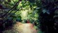 Chemin de Péchabé