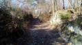 De La Ferté-Alais à Boutigny par les bois Charron et de Miséry