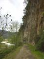 Chemin entre gardon et falaise ...
