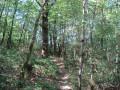 Promenade autour de l'Aussonnelle