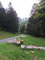 Boucle en forêt de Barousse entre hêtres et pins