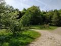 La vallée de Murbach par les cols de Wolfsburge et de Judenhut