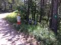Randonnée depuis Beaurières: Forêt d'Auton