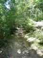 Sentier Botanique du Bois de Sizay