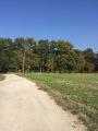 Derrière le parc du château de Chamarande