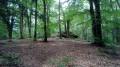 Le Dolmen Chevresse en Forêt de Breuil-Chenue