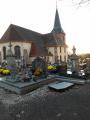 Le Bois de Bessoncourt
