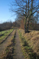 Chemin des coteaux de Bellegarde à Masseube