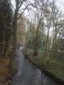 En forêt de Neufchâteau