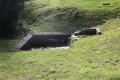 Les Fontaines près de Salignac de Mirambeau