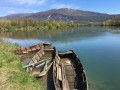 Entre Brangues et Rhône