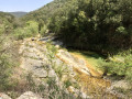 La haute vallée de l'Amous