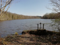 Forêt, cours d'eau et étangs autour de Signy-le-Petit