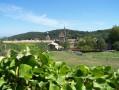 La Chartreuse de Valbonne Nord