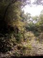 L'abri sous roche de La Tapy