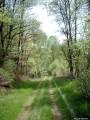 Chemin du Puy Blanc