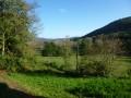 Forêts et prairies autour de Ferrières