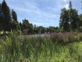 Lac de Seilhac
