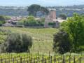 Montpeyroux - St-Guilhem-le-Désert par le sentier de St-Jacques (GR® 653)