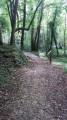 Le Bois de La Barre