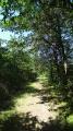"""Le chemin """"Découverte Nature"""""""