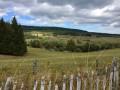Entre les Ruisseaux de Fredet et de Chadeyre