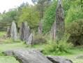 Landes, étangs et mégalithes à Monteneuf