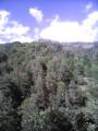 Boucle dans la vallée de l'Agueneyre à partir de Rochepaule