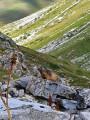 Tour du Mont Roup