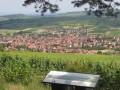 Le vignoble de Westhoffen et de Wangen