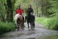 Balade de pleine nature, à cheval, au Pays de Cunlhat