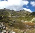 Forêt et alpages sur les hauteurs d'Argentière