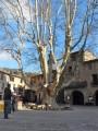 Place de St Guilhem