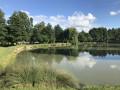 Boucle en Forêt de Boizé et bords de Vienne