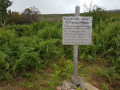 Boucle dans la châtaigneraie de Santa-Reparata-Di-Moriani