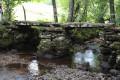 Pont gaulois