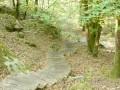 De Barbizon au Rocher de Milly, longue escapade hors des sentiers battus